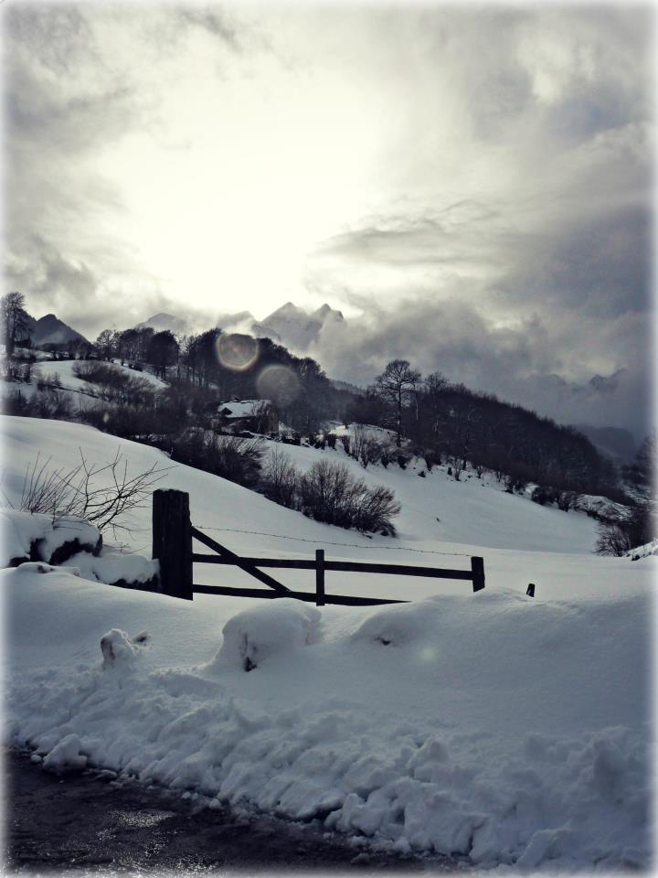 paysage_02